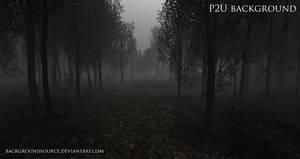 Dark Woods - premade background