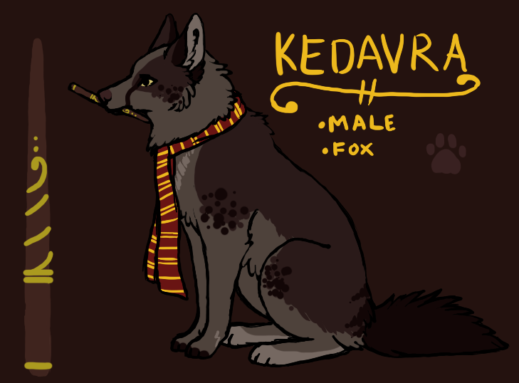 Kedavra ref by pandapoots