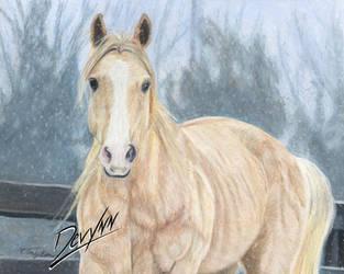 Winter Wonder - Prismacolors by Devynn
