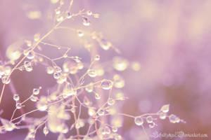 blush by ElyneNoir