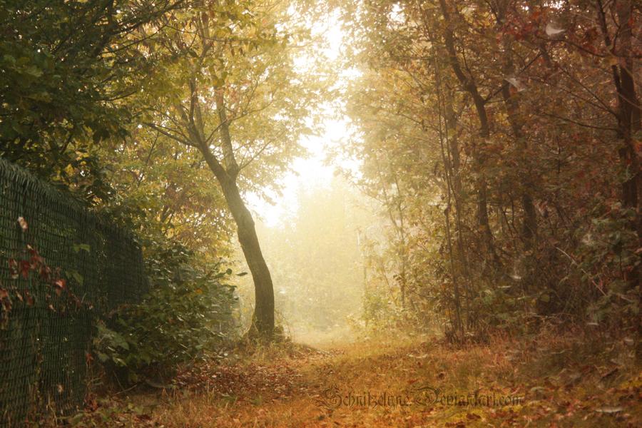Magical Autumn by ElyneNoir
