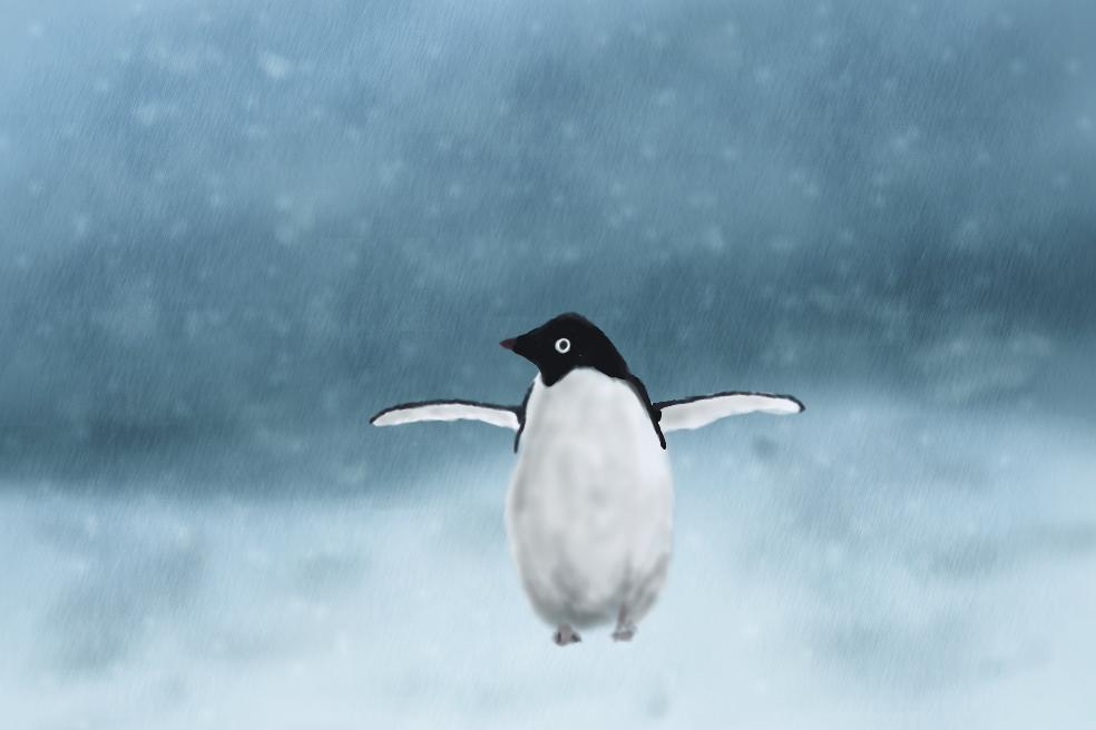 Little Penguin by Schnitzelyne