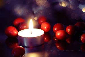 Cranberries by ElyneNoir