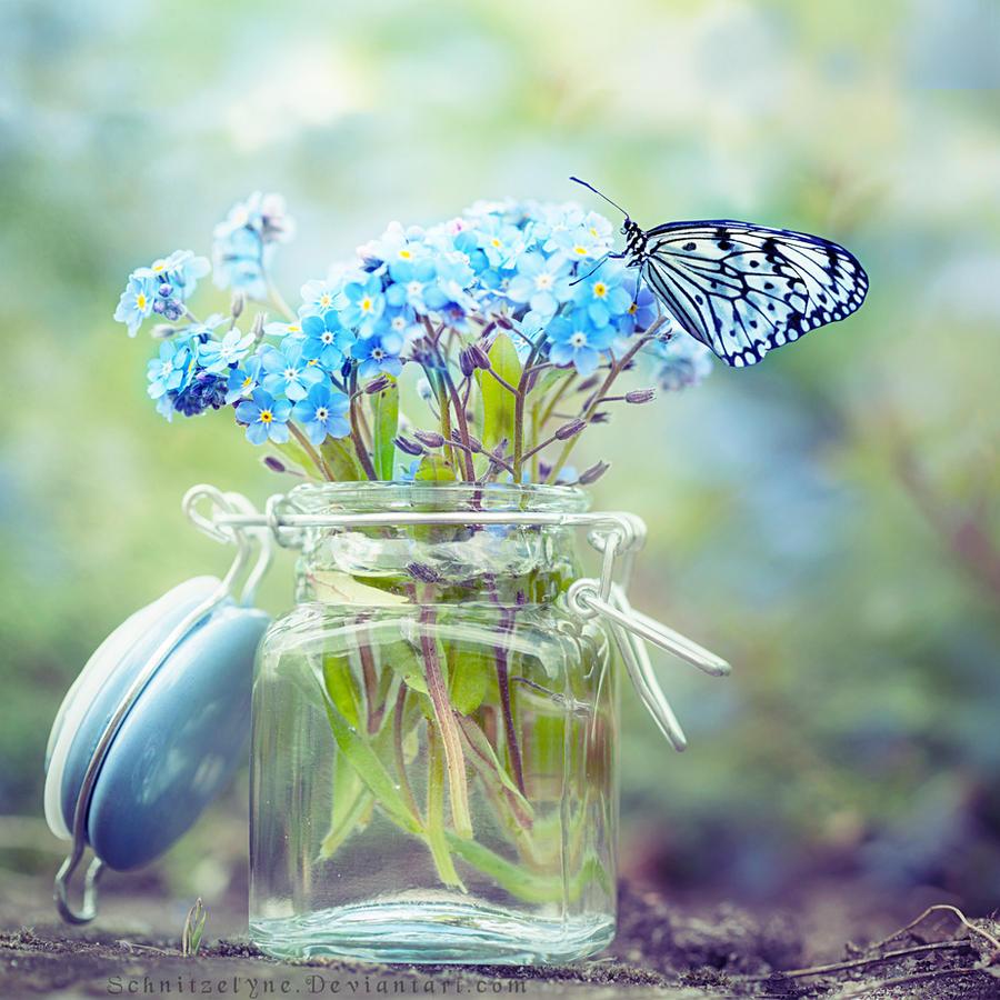 Springtime by ElyneNoir