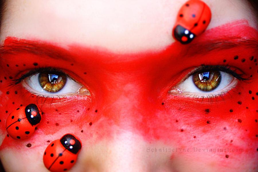 Ladybugs by Schnitzelyne