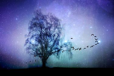 Into Infinity by ElyneNoir