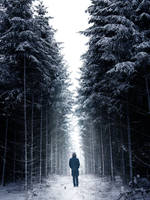 148 - Wanderer by ElyneNoir
