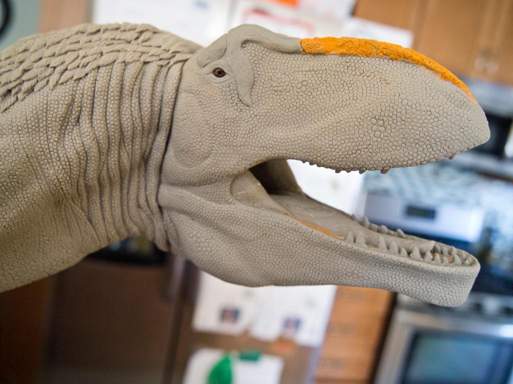 Giganotosaurus Model by nwfonseca
