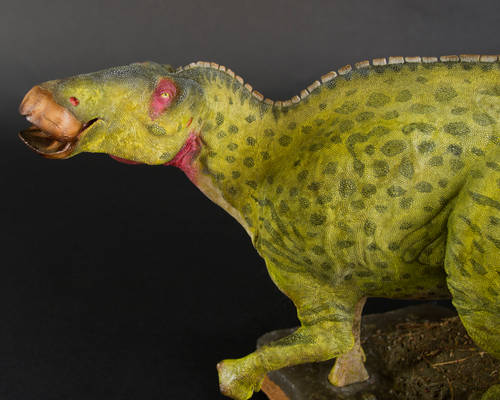 Edmontosaurus annectens