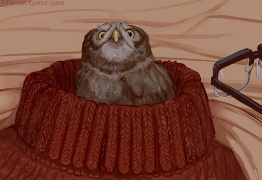 Owl Ford