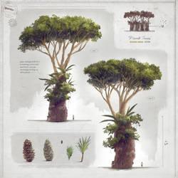 Plumb Tree