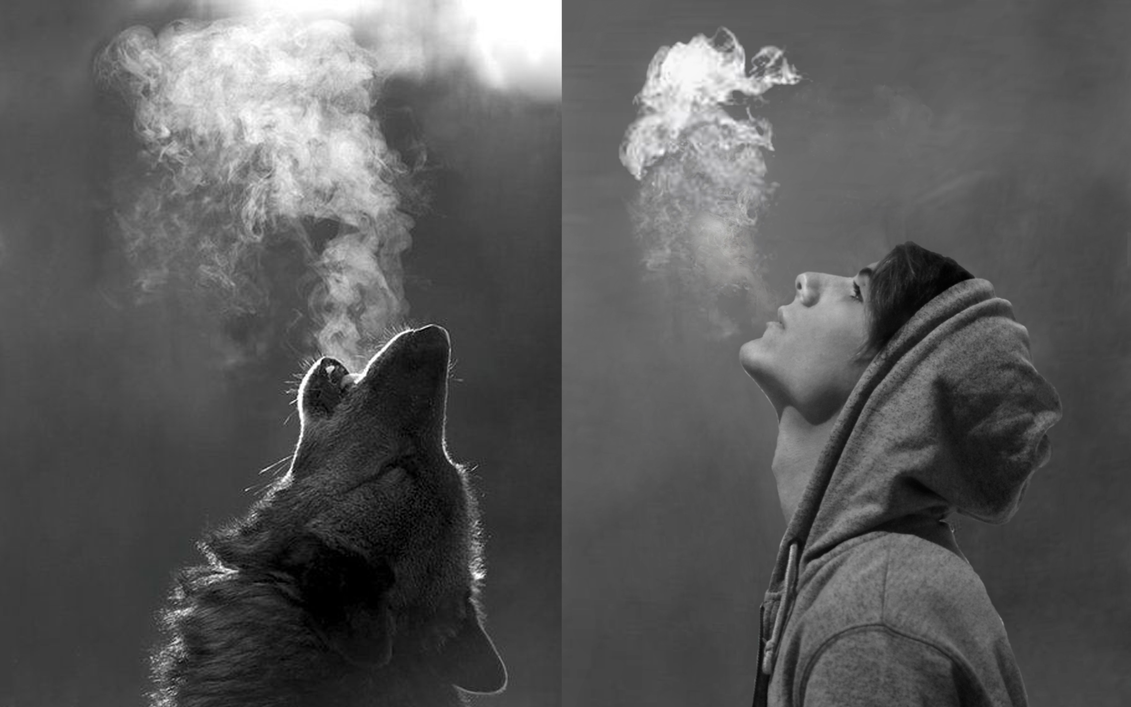 Wolf And Man