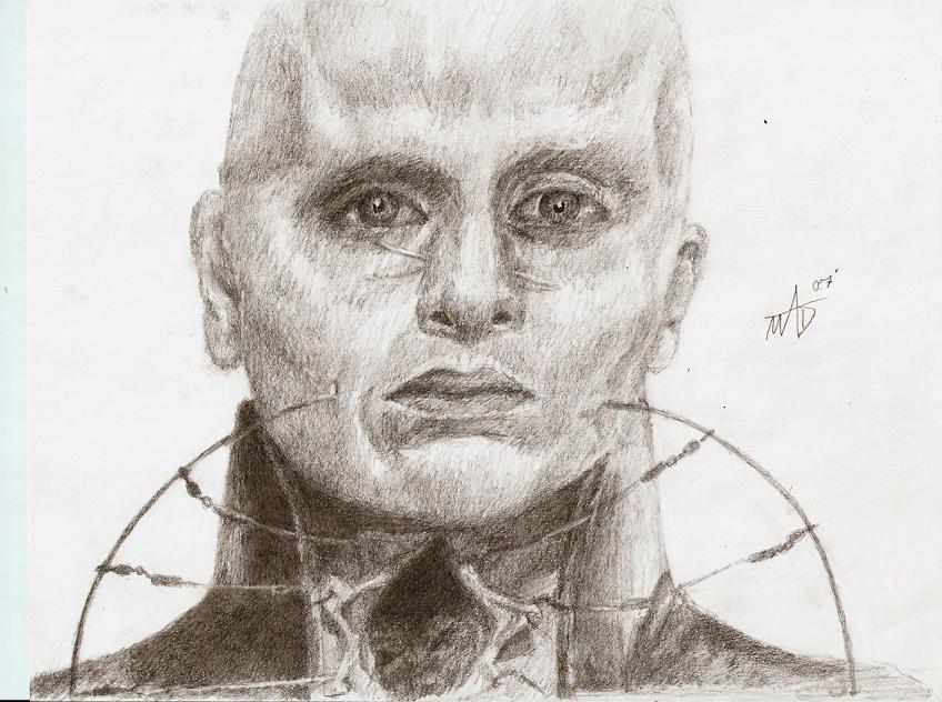 http://fc01.deviantart.com/fs16/f/2007/189/1/b/She_Cenobite_by_Murdertz.jpg