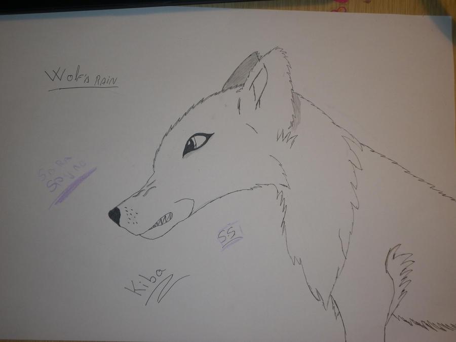 Mi arte :33 Kiba_the_wolf_by_saraspyro-d5pgcev
