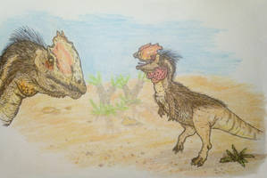 Dilophosaurus mating season