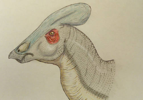 Tlatolophus galorum