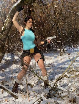 Tomb Raider 25 years celebration