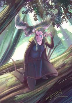 Commission: Sentinel