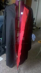 Akatsuki Cloak Pinned (cosplay)