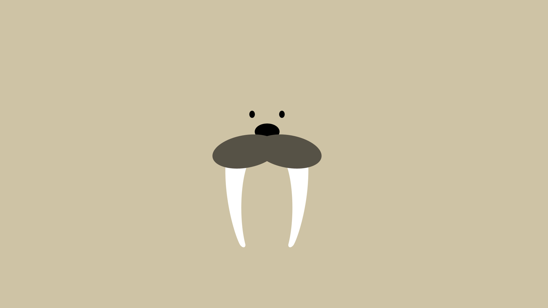 walrus wallpaper 2 by derclaudius on deviantart