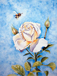 rose and bumblebee by yushnikova