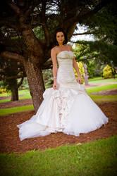 Wedding Day 7 by Katty10