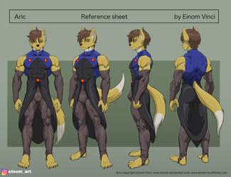Reference sheet Aric 2