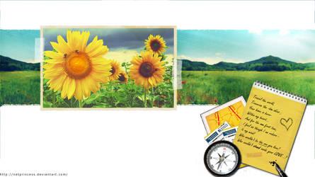 Raindrops And Sunflowers