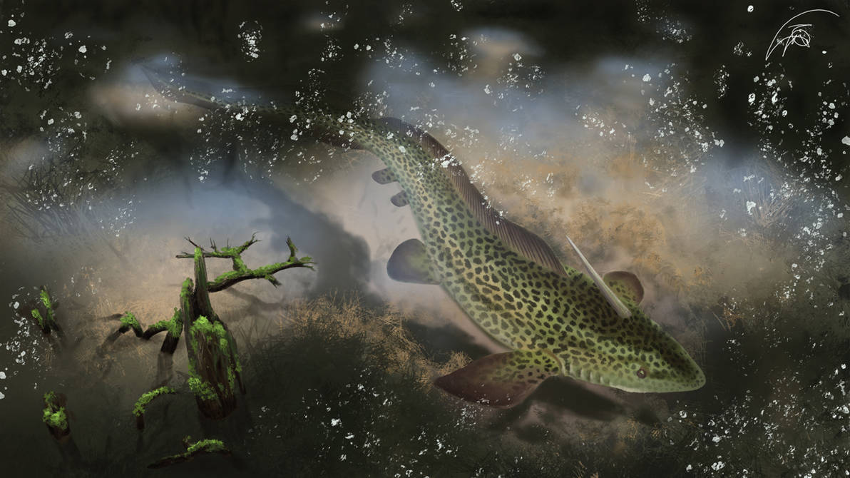 Xenacanthus in devonian swamp river by Bonjoer