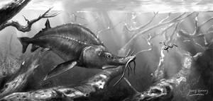 Beluga Sturgeon By Joery Verweij by Bonjoer