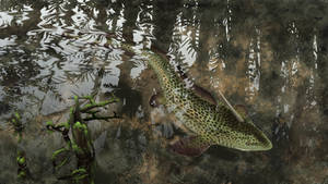 Xenacanthus in shallow swampwaters7 by Bonjoer