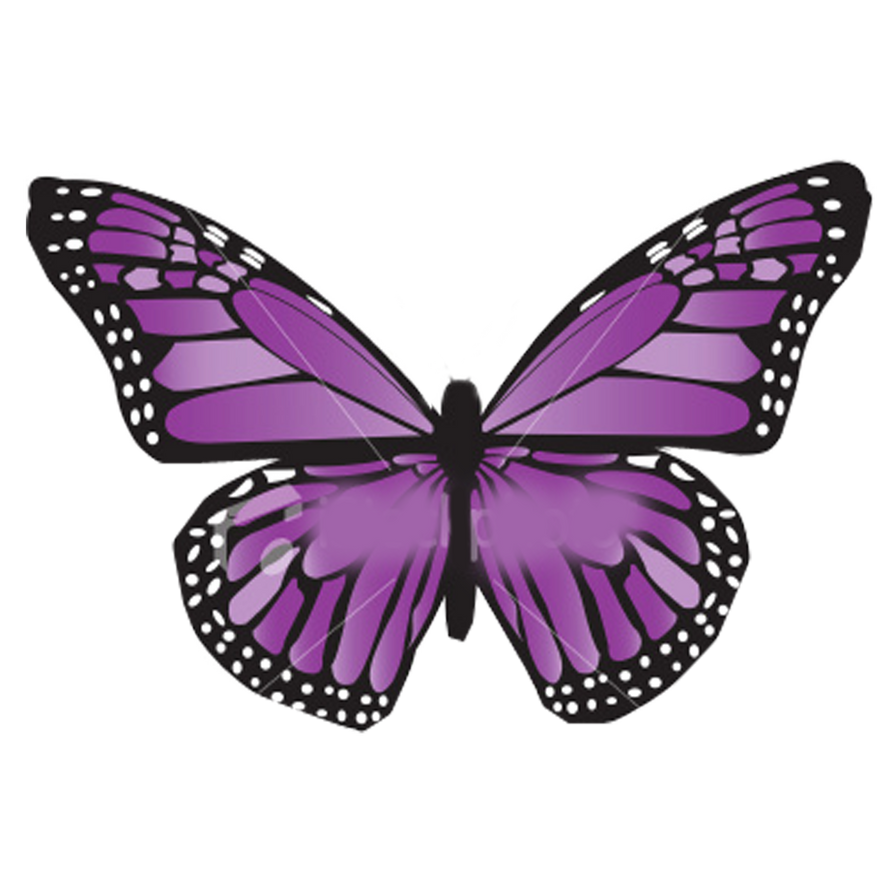 Alas de Mariposas Moradas PNG by NicoleEditions12