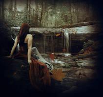 Into The Autumn by PhoenixalThor