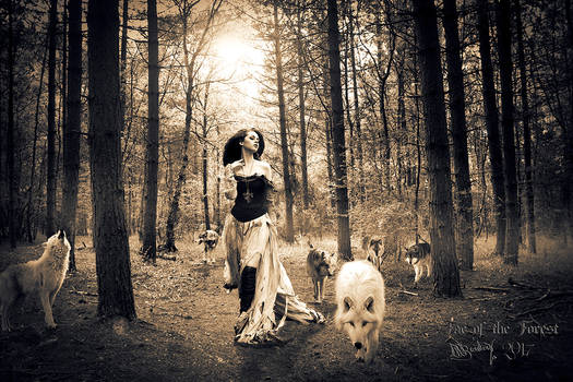 Fae of the Forest Sepia