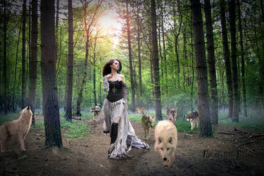 Fae of the Forest Vignette/Mist