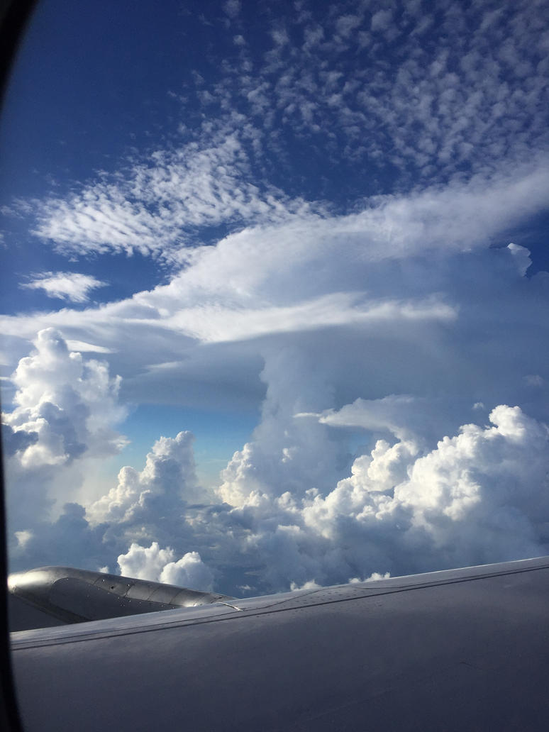 Mushroom Cloud by WildernessExplor3r