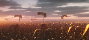 Crop Watch by JamesCombridge