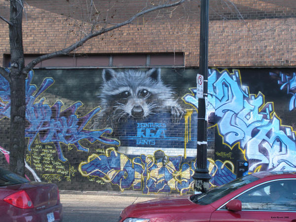 Rocky the Racoon Gone Gangsta by Katerist