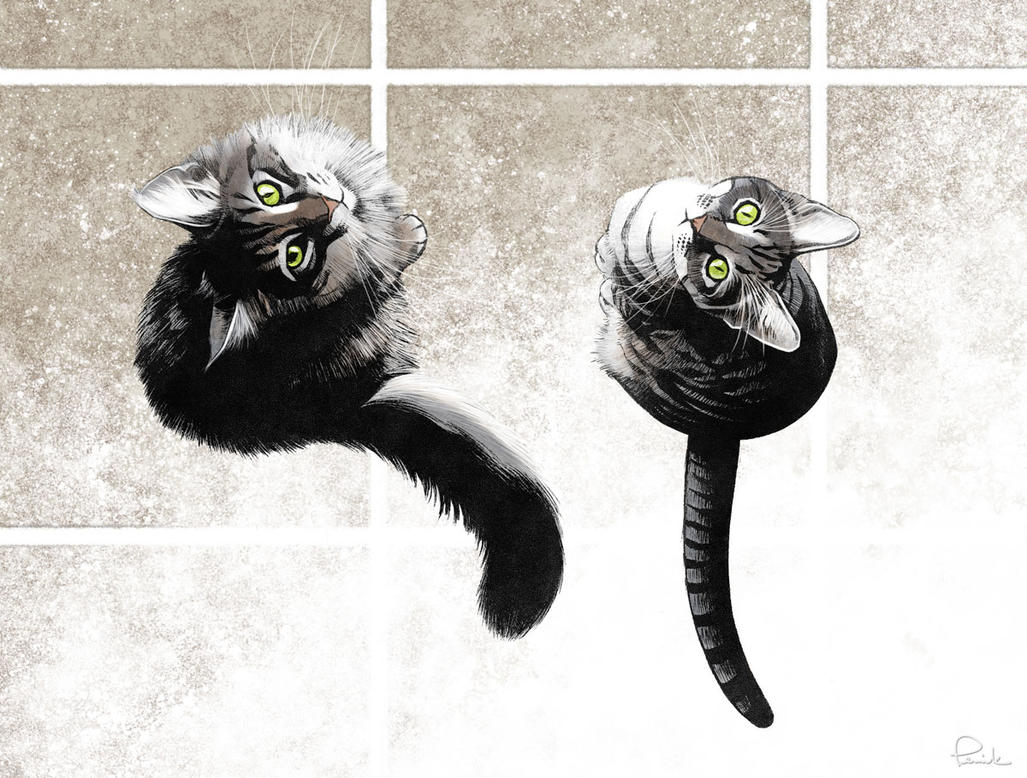 my cats - color by PENICKart