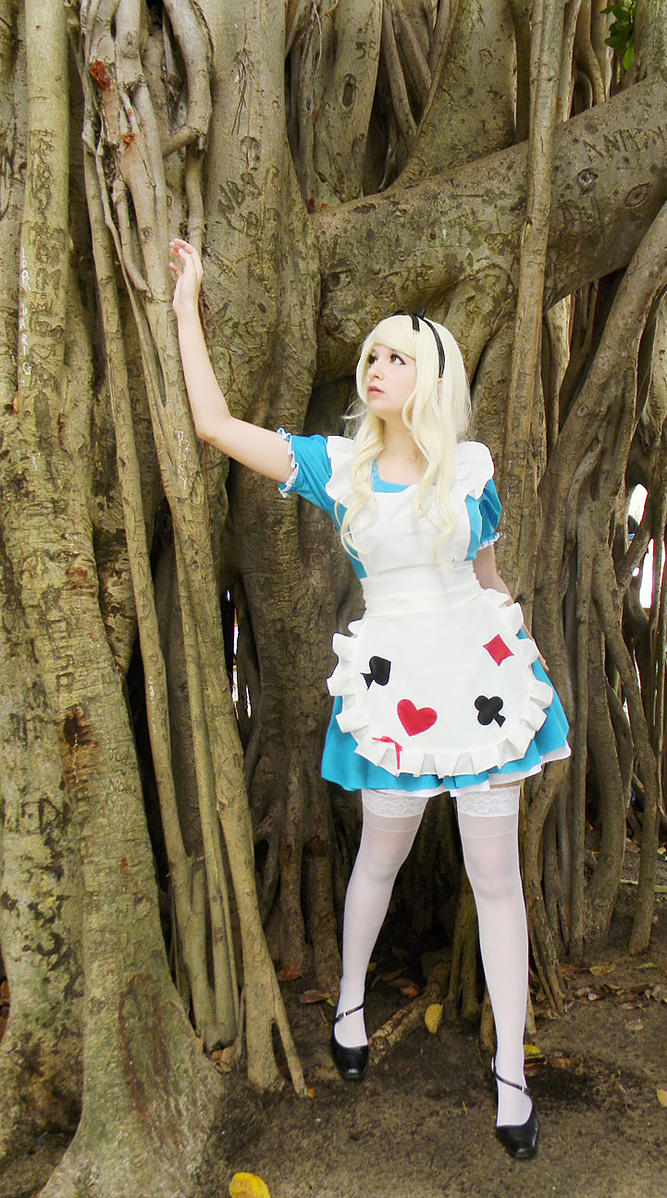 Alice in Wonderland by usagiyuu