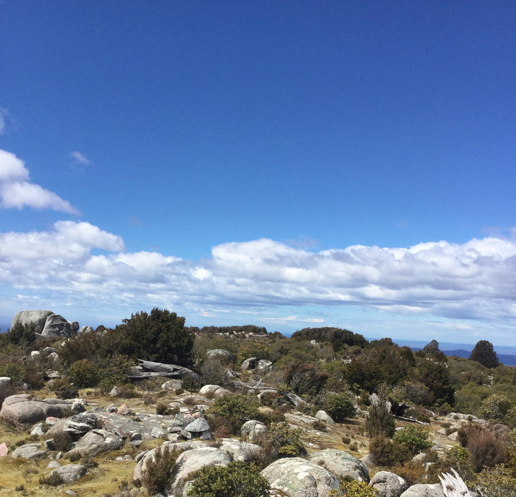 Tasmanian Blue Tiers - Unnamed Peak by MK-FouR