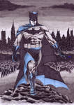 Batman Blue and Grey
