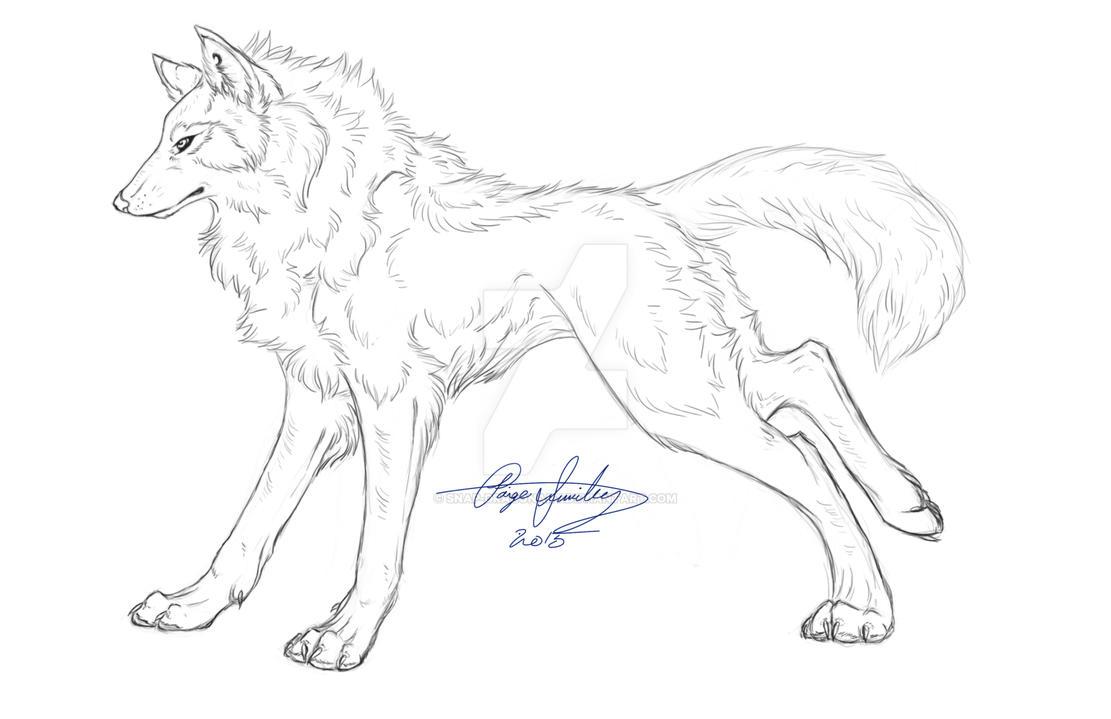 Wolf by I-WindWalker-I