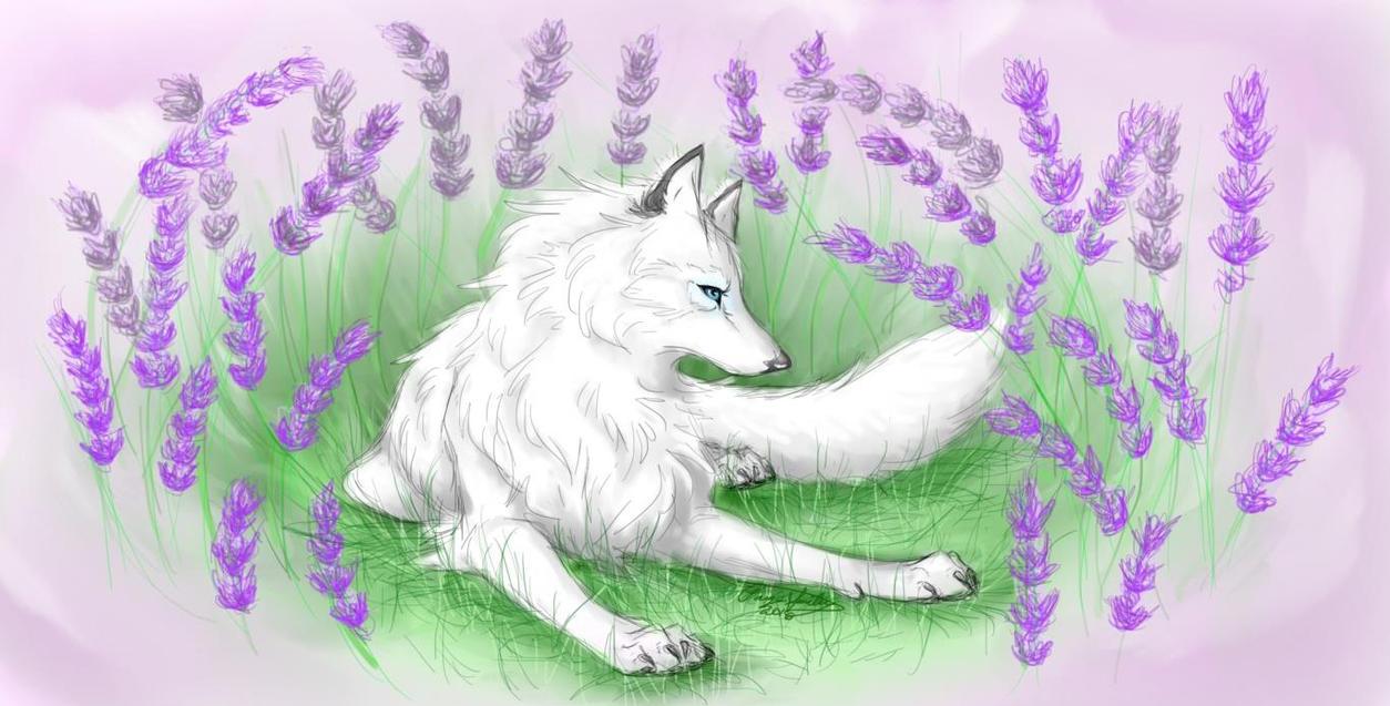 Lavender Heart by I-WindWalker-I
