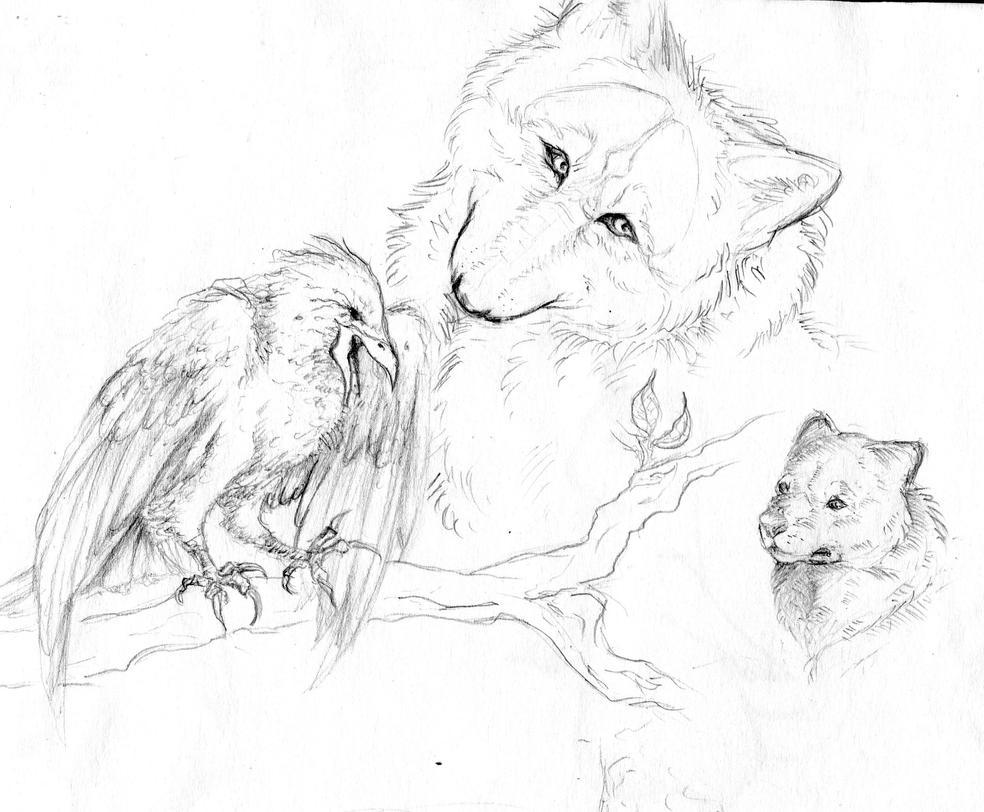 Animal Sketches by I-WindWalker-I
