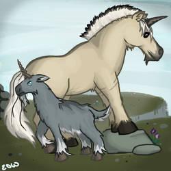 Skagosi Unicorns