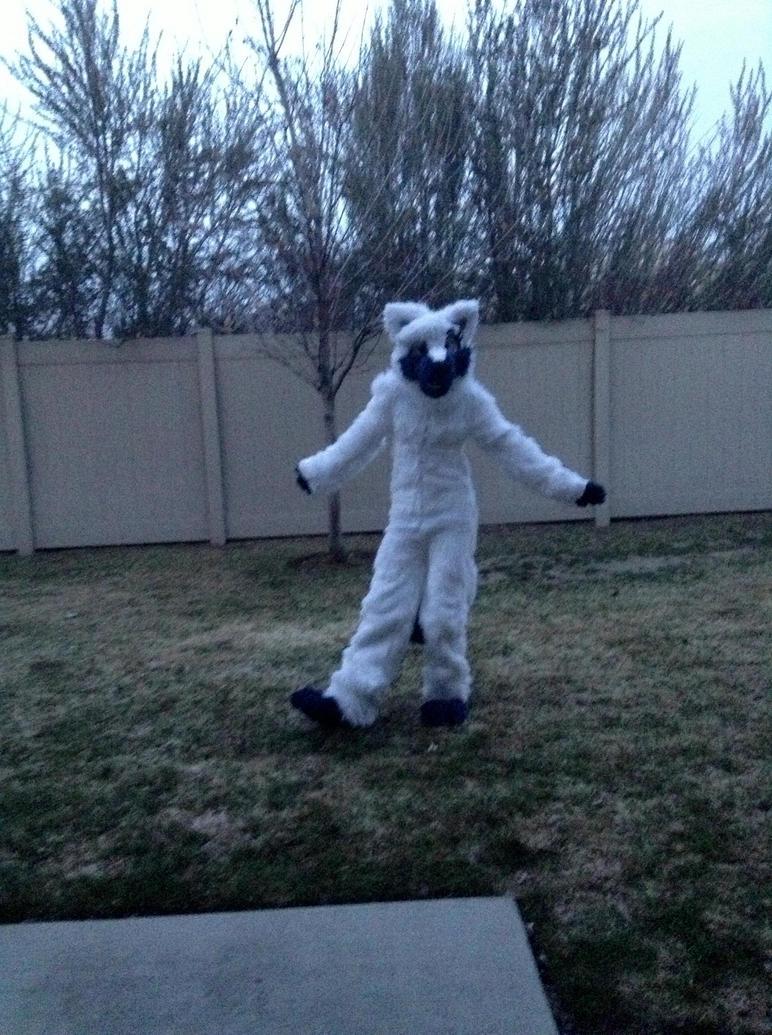 Here is my fursuit!!!! by BlizandBain