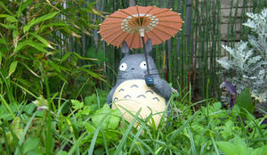 Totoro in my garden... by AlbertoCarrera