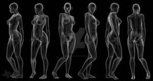 X-Ray Female (Body)