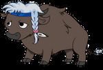 Buffalo herbalist Misty Mane